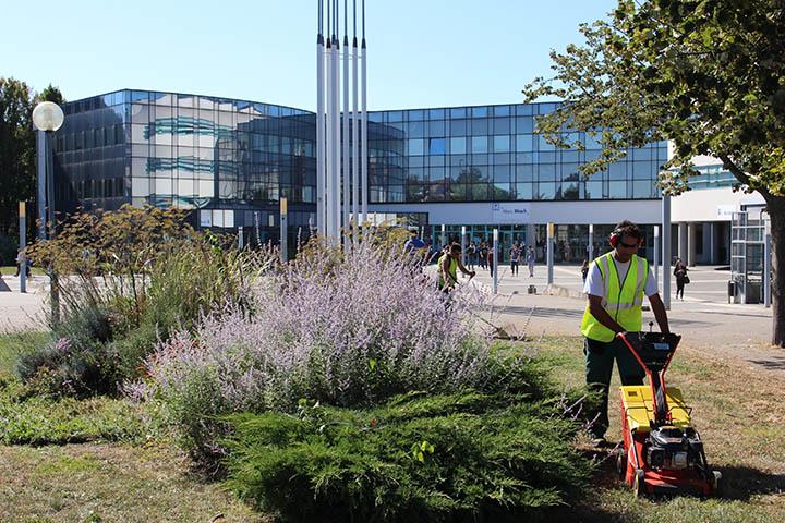 La r gie des crivains prestations for Global espaces verts